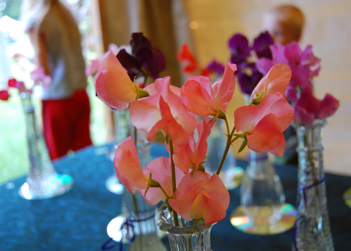 sweet-pea-flower-show-02_700